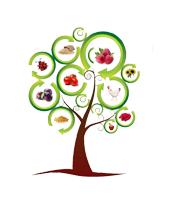 Održana treća međunarodna naučna konferencija o organskoj proizvodnji